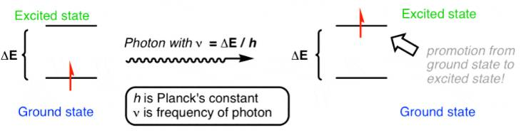 وقتی نور به مولکول می تابد الکترون از تراز پایه به تراز برانگیخته گذار انجام می دهد.