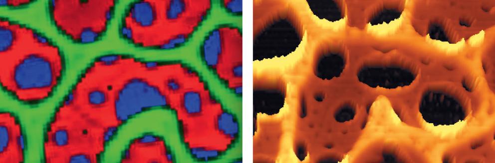 تصویر میکروسکوپی و تصویر رامان